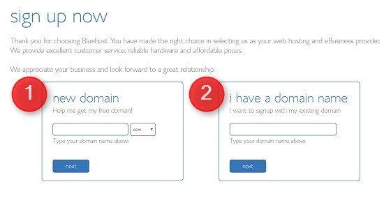 海外サーバーBluehostの登録方法 ドメイン登録