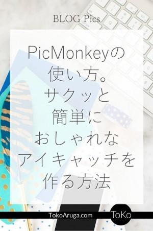 ブログアイキャッチを無料ソフトPicMonkeyを使って簡単に作る方法